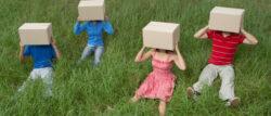حياتك داخل الصندوق
