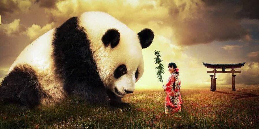 ساهم فى اليوم العالمي للحياة البرية
